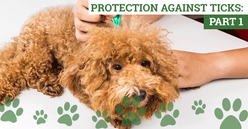 Protection Against Ticks: Part 1